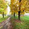 Park near school