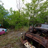 Derelict cars in Detroit