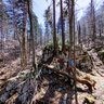 'Vihoraški put' hiking trail - 2