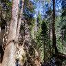 'Vihoraški put' hiking trail - 4