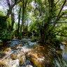 River Mrežnica - 'Sastavci' - 5