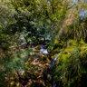 River Mrežnica - 'Sastavci' - 6