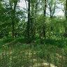 Pontje Wateroversteek, Doeparknooterhof, Zwolle, Nederland