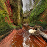 Finnich Glen (The Devil's Pulpit) nr Killearn