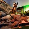 Sala Biodiversidad Museo del desierto 2