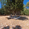 Sfakteria island, Pilos, Peloponnese, Greece