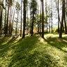 parco pubblico a Vipiteno - Südtirol