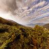 Panorama sul Lago di Como da Pian delle Alpi