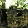 Cellar on Old Greer Farm