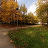 Liman 4, Novi Sad