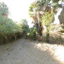 Ojo de agua en la Misión de San Francisco de Borja, Baja California.