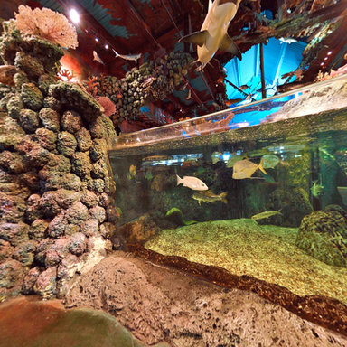 Bass pro shop dolphin mall miami panorama in usa 360cities for Bass fish tank