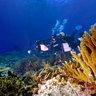 Maldives Gan