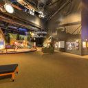 Albatross D.Va and Fokker Dr.I, Museum of Flight, Seattle, WA