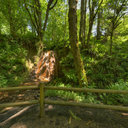 North Fork Falls, Coal Creek, Newcastle, WA