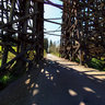 Rail Road Trestle
