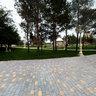 Парк дружбы Волгоград - Баку