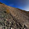 Halda Maximilian / Heap dumps of The Mine Maximilian, Spania Dolina (SVK)