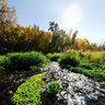 Boise River, Fall #4, Middleton, Idaho, USA