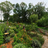 Die Garten Tulln - Bauerngarten (15)
