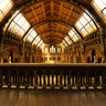Natural History Museum, London