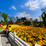 The 8th China Flower Expo,Beijing Garden 北京园 (001)
