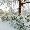 Netherlands - Gouda - Vroesenpark covered with snow