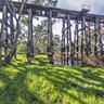 Pyalong Trestle Bridge