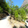 Ancient - Samaria Gorge