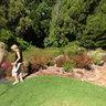 Kirstenbosch Botanical Gardens Picnic Area