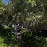 Saratoga Garden View