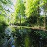Bochum botanical garden
