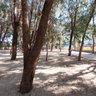 Albir Park 3 www.tourvr360.tk