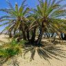 Crete, Palm Beach