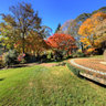 Autumn in Mt Wilson - The Blue Mountains ... Panorama 4 of 4