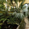 Orangery - Botanical Garden