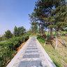 Shanxi Province in jincheng ze zhou park