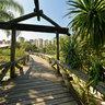 Botanic Garden - Curitiba - Bridge