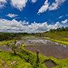 Jatiluwih : Bali's terrace paddy fields