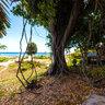 Tanna, Vanuatu : EverGreen Resort Garden
