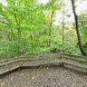 Greensboro Bog