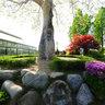 반비식물원정문옆