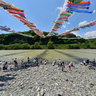 Swimming carp streamers over the Sagami River