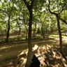 Edirne Havsa Yeşil Park