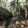 Path near Oksroedkilen, Fredrikstad municipality, Norway