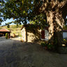 Manastir Sveti Pantelejmon - Lepcince