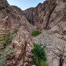 Desert Oasis - Dahab