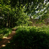Outside Gwyle Cottages Tyneham Dorset England