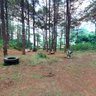 Airsoft Game Site at Carino - Camp 7