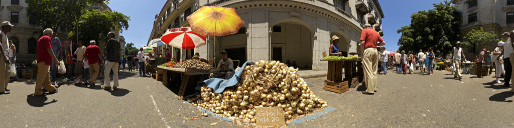 Farmers Market in old Havana - Onions
